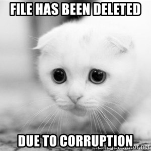 Sadcat - file has been deleted due to corruption