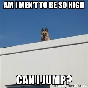 Roof Dog - AM I MEN'T TO BE SO HIGH CAN I JUMP?