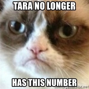 angry cat asshole - TARA NO LONGER has this number