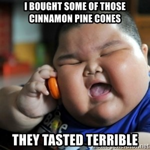 fat chinese kid - I bought some of those cinnamon pine cones They tasted terrible