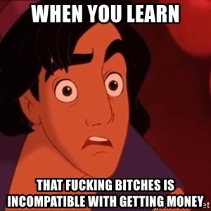 Horrified Aladdin - When you learn that fucking bitches is incompatible with getting money