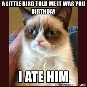 Tard the Grumpy Cat - a little bird told me it was you birthday i ate him