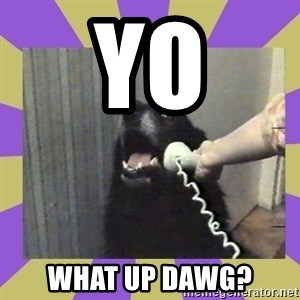 Yes, this is dog! - Yo What up dawg?
