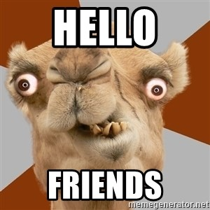 Crazy Camel lol - HELLO  FRIENDS