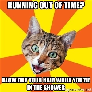 Bad Advice Cat - running out of time? blow dry your hair while you're in the shower