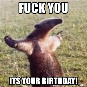 FUCK YOU, I'M AN ANTEATER - FUCK YOU ITS YOUR BIRTHDAY!