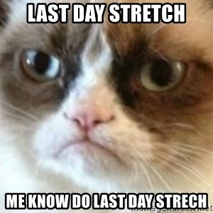 angry cat asshole - Last day stretch Me know do last day strech