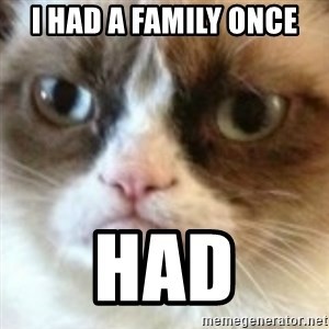 angry cat asshole - I had a family once Had