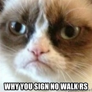 angry cat asshole - Why you sign NO WALK RS