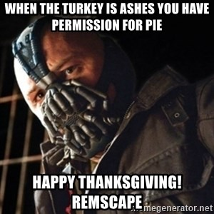 Only then you have my permission to die - When the turkey is ashes you Have permission for pie Happy thanksgiving!  REMSCAPE