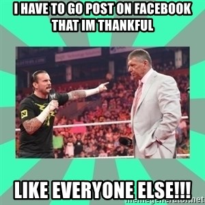 CM Punk Apologize! - I HAVE TO GO POST ON FACEBOOK THAT IM THANKFUL Like everyone else!!!