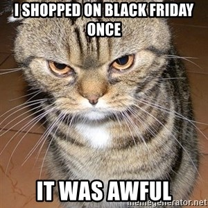 angry cat 2 - I shopped on Black Friday once It was awful