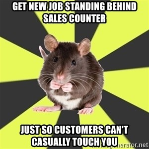 Survivor Rat - Get new job standing behind sales counter just so customers can't casually touch you