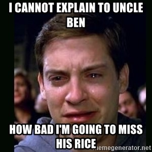 crying peter parker - I CANNOT EXPLAIN TO UNCLE BEN HOW BAD I'M GOING TO MISS HIS RICE