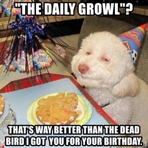 """Birthday dog - """"The daily growl""""? that's way better than the dead bird I got  you for your birthday."""