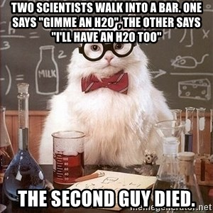 "Science Cat - Two scientists walk into a bar. One says ""gimme an h20"", the other says ""I'll have an h20 too"" the second guy died."