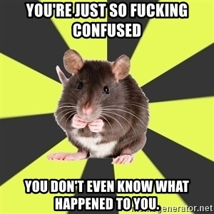 Survivor Rat - You're just so fucking confused You don't even know what happened to you.