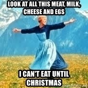 Look at all these - look at all this meat, milk, cheese and egs  i can't eat until christmas