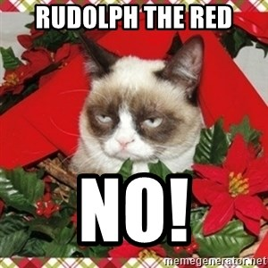 Grumpy Christmas Cat - Rudolph the red NO!