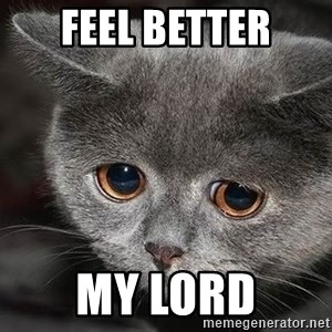 Sadcat - FEEL BETTER My Lord