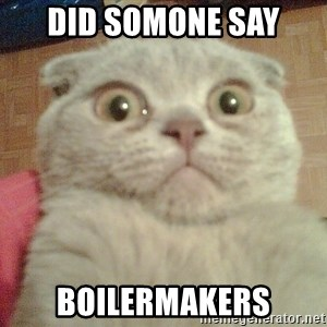 GEEZUS cat - Did somone say boilermakers
