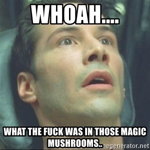 i know kung fu - whoah.... what the fuck was in those magic mushrooms..