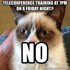 Tard's cat - Teleconference training at 7pm on a friday night? No