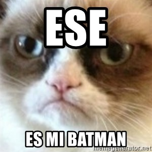 angry cat asshole - Ese Es mi batman