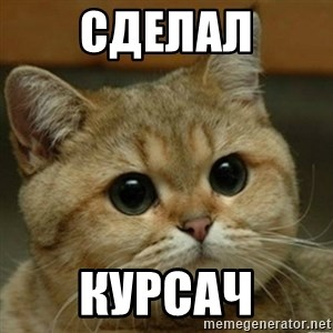 Do you think this is a motherfucking game? - сделал курсач
