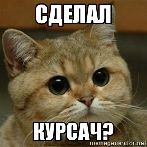 Do you think this is a motherfucking game? - сделал курсач?