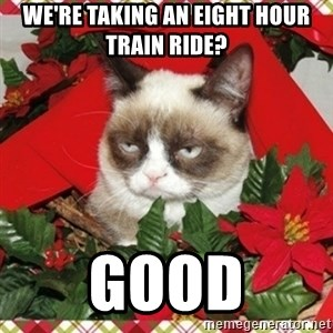 Grumpy Christmas Cat - we're taking an eight hour train ride? good