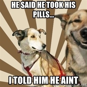 Stoner dogs concerned friend - HE SAID HE TOOK HIS PILLS... I TOLD HIM HE AINT