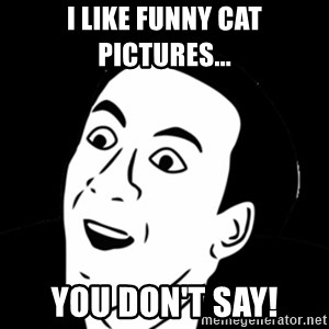 you don't say meme - I like funny cat pictures... you don't say!