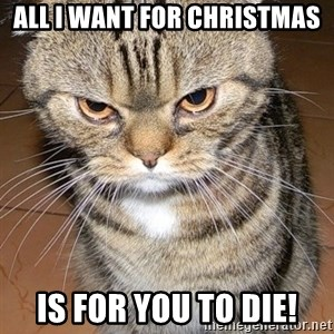 angry cat 2 - all i want for christmas is for you to die!
