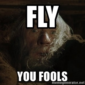 gandalf run you fools closeup - fly you fools