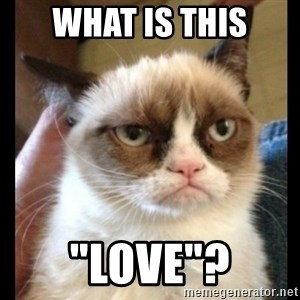 "Frown Cat - what is this ""love""?"