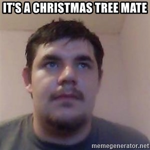 Ash the brit - IT'S A CHRISTMAS TREE MATE