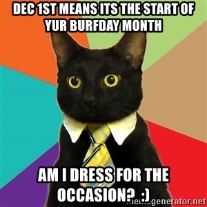 Business Cat - dec 1st means its the start of yur burfday month am i dress for the occasion?  :)