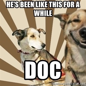 Stoner dogs concerned friend - HE'S BEEN LIKE THIS FOR A WHILE DOC