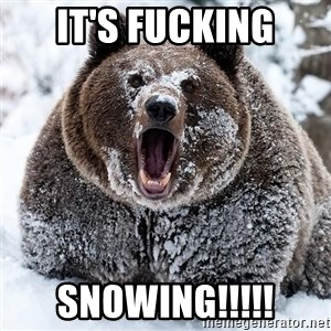 Clean Cocaine Bear - IT'S FUCKING SNOWING!!!!!