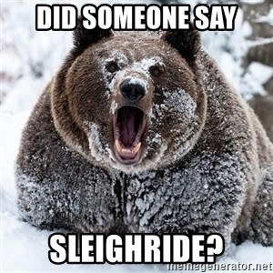 Clean Cocaine Bear - did someone say sleighride?