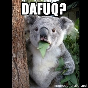 Koala can't believe it - dafuq?
