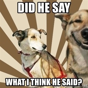 Stoner dogs concerned friend - DID HE SAY WHAT I THINK HE SAID?