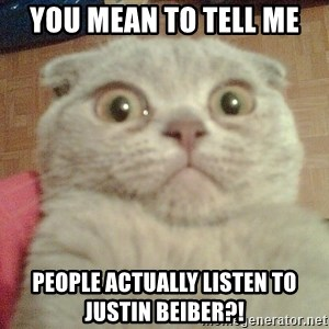GEEZUS cat - You mean to tell me people actually listen to justin beiber?!