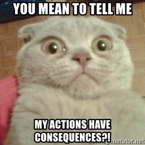 GEEZUS cat - You mean to tell me my actions have consequences?!