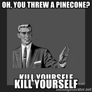 kill yourself guy - Oh, you threw a pinecone? kill yourself
