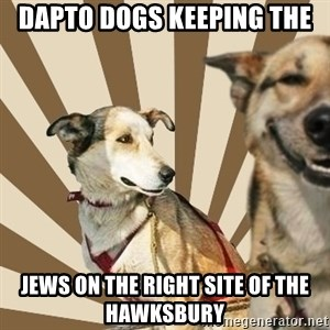 Stoner dogs concerned friend - DAPTO DOGS KEEPING THE  JEWS ON THE RIGHT SITE OF THE HAWKSBURY