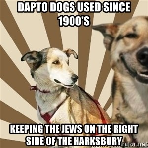 Stoner dogs concerned friend - DAPTO DOGS USED SINCE 1900'S KEEPING THE JEWS ON THE RIGHT SIDE OF THE HARKSBURY