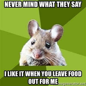 Prospective Museum Professional Mouse - never mind what they say i like it when you leave food out for me