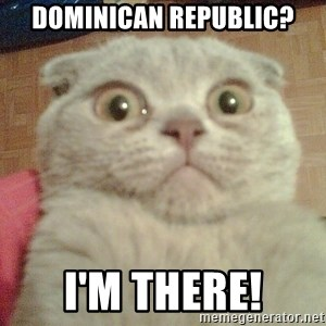 GEEZUS cat - Dominican republic? I'm there!